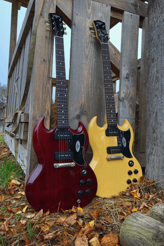 Electric_Guitar_Maybach_Guitars_Albatroz_double_pickup_outside